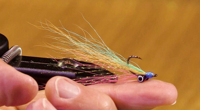 trout-closer-baby-rainbow