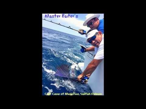 07 06 2016 Sailfish Catch and Release, Master Baiter´s Sportfishing & tackle, Puerto Vallarta