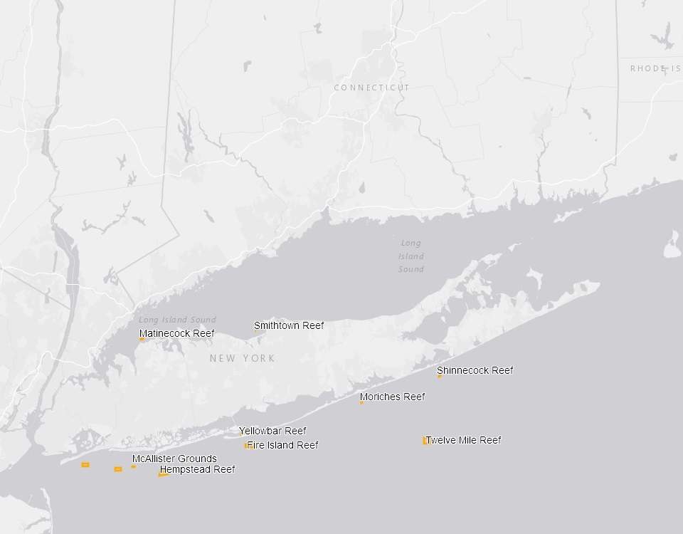 Digital Mapper Of New York Artificial Reef