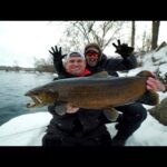 Winter Brown Trout and Steelhead Fishing (Great Lakes Fishing Tour: Episode 2)