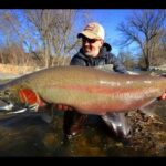 The 3 Best ways to catch Spring Steelhead and Brown Trout