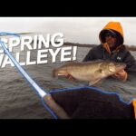 The BEST 3 Baits for Spring Walleye!