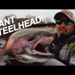 How to Steelhead Fish Great Lakes Rivers (GIANTS Caught!)