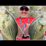 SIGHT FISHING for GIANT Southern Wisconsin CRAPPIES!